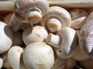 Dovlecei cu ciuperci