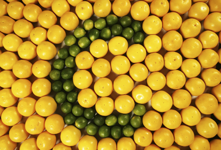 poza vitamina C contra racelii