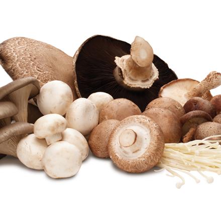 ciuperci calorii