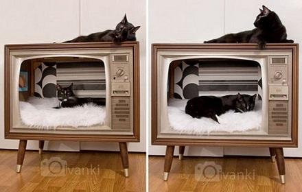 Своими руками дом для кошек
