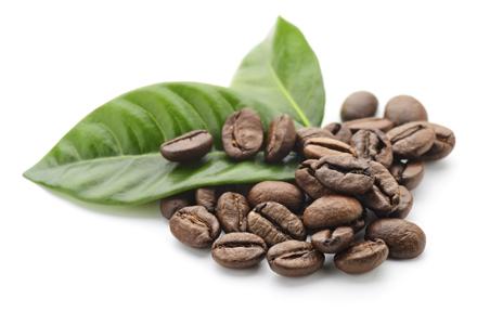 delgada ganoderma a infuzat cafeaua de slăbire