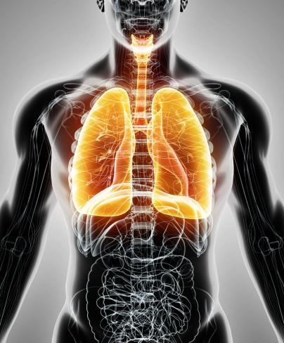 Plamani bolnavi simptome