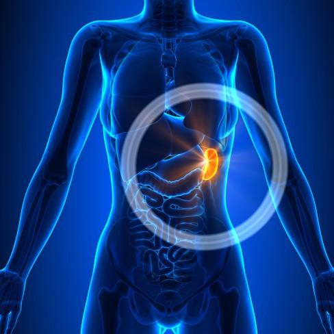 pierderea în greutate durerea abdomenului pieptului