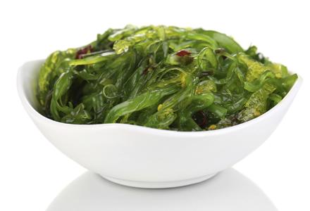 Imagini pentru imagini cu alge marine