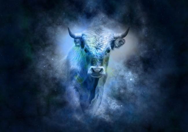 Картинки по запросу býk znamení