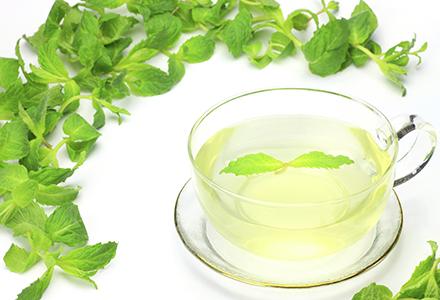 ceai de papadie contraindicatii