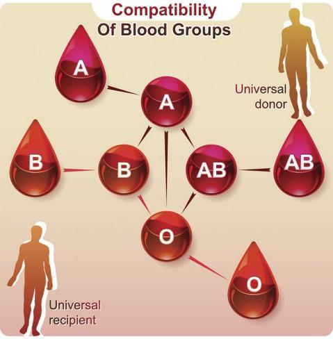 parinti cu aceeasi grupa de sange)