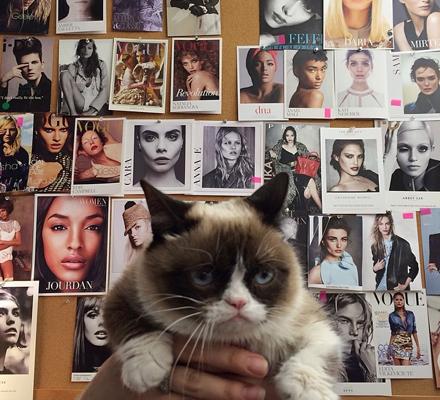 Grumpy Cat in Vogue