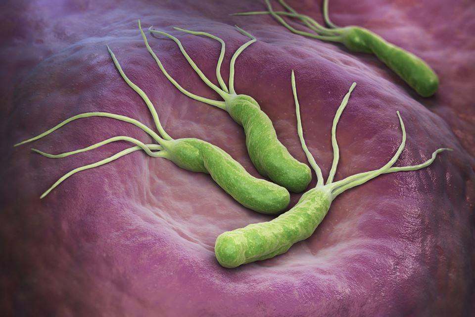 bacterii gram pozitive simptome