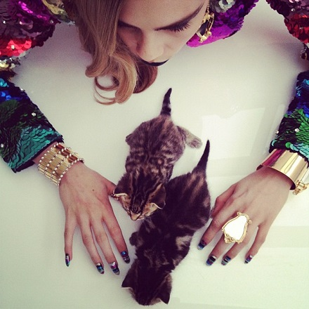 cara_delevingne poze cu pisici