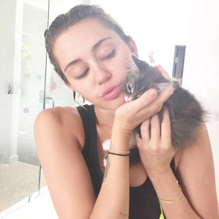 miley_cyrus cu pisica