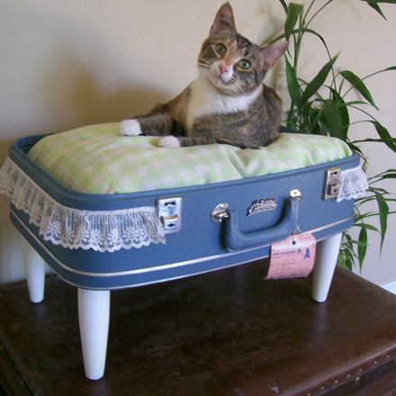 valiza_in_pat_pentru_animale