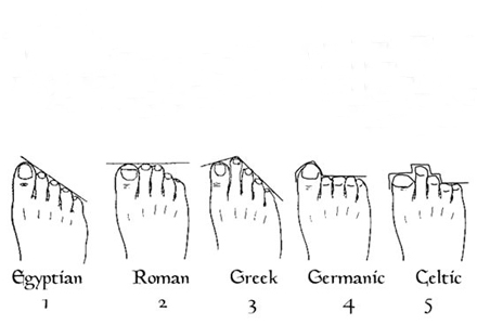 forma degetelor de la picioare