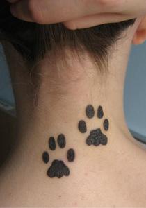 tatuaj_pe_gat_cu_labe_de_animal