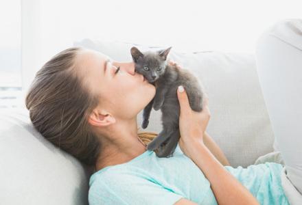 ingrijire pisica