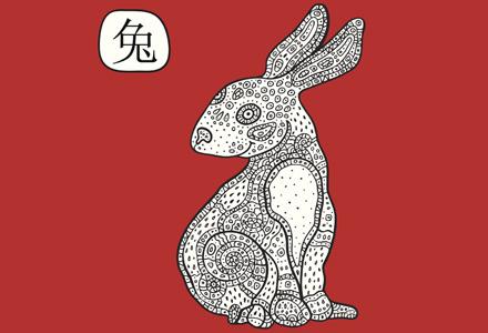 iepure zodiac chinezesc