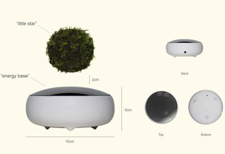 bonsai_plutitor_schema