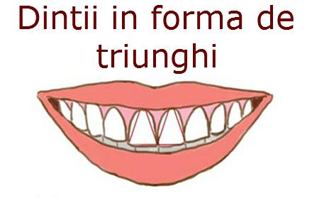 forma dintilor