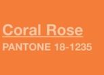 poza culoare coral rose pantone
