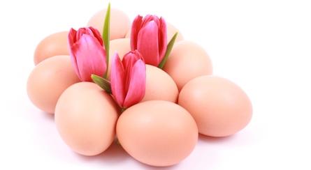 calorii albus de ou