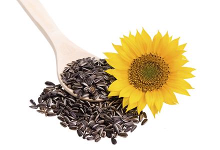 seminte de floarea soarelui