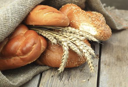 paine de grau