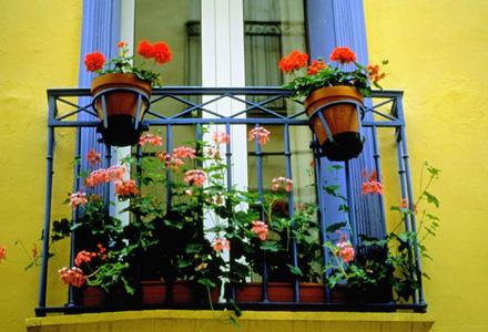 balcon flori plante terasa