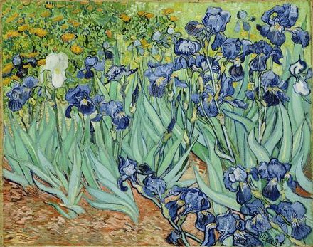 irisi vincent van gogh cea mai scumpa pictura din lume