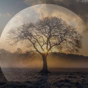 Luna Nouă în Balanță. Două femei din zodiac își înșală jumătatea