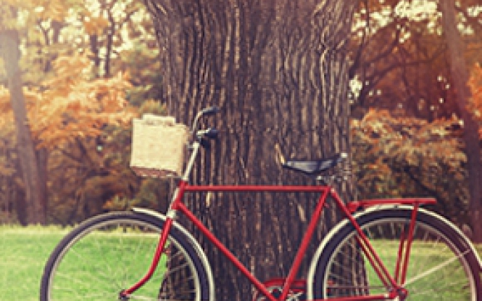 bicicleta de camera slabeste